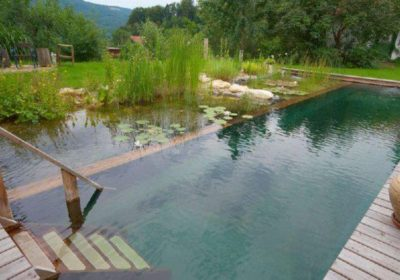 natural swimming pool by pond alchemy
